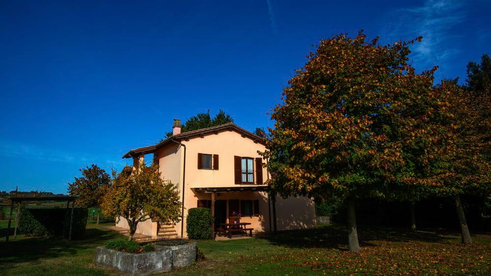 Ferienhaus Bolsenasee