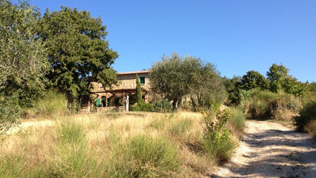 Ferienhaus Großes Grundstück Toskana