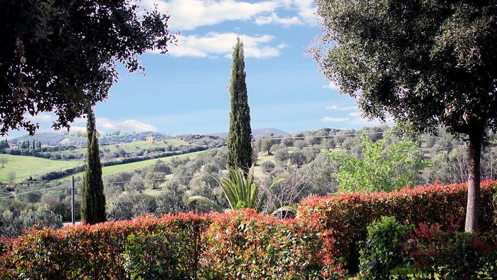Ferienwohnungen Marrucheti Toskana